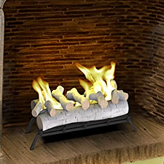 Regal Flame 24 Inch Convert to Ethanol Fireplace Log Set with Burner Insert from Gel or Gas Logs (Birch)
