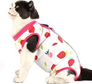 Due Felice Cat Surgical Recovery Suit Small Dog Onesies Puppy Protective Bodysuit Pets Shirt for Abdominal Wounds Skin Diseases After Surgery Wear E-Collar Alternative, Home Indoor