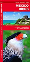 Mexico Birds: An Introduction to Familiar Species (Wildlife and Nature Identification)