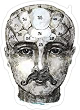 Andrews Mall Copy of Phrenology Head Smoking. Stickers (3 Pcs/Pack)