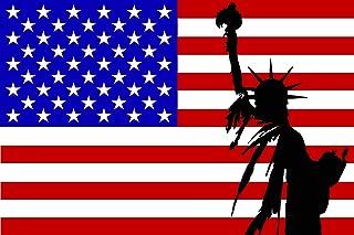 Michael & Rene Pflüger Barmstedt 8,4 x 5,4 cm Autoaufkleber Liberty auf USA Fahne Flagge Sticker Aufkleber Sticker fürs Auto Motorrad Handy Laptop
