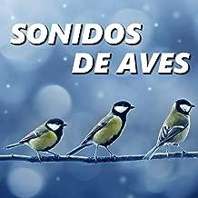 sonidos de aves mp3