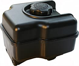 Best briggs and stratton fuel problems Reviews