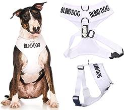 Amazon.es: arnes perro guia