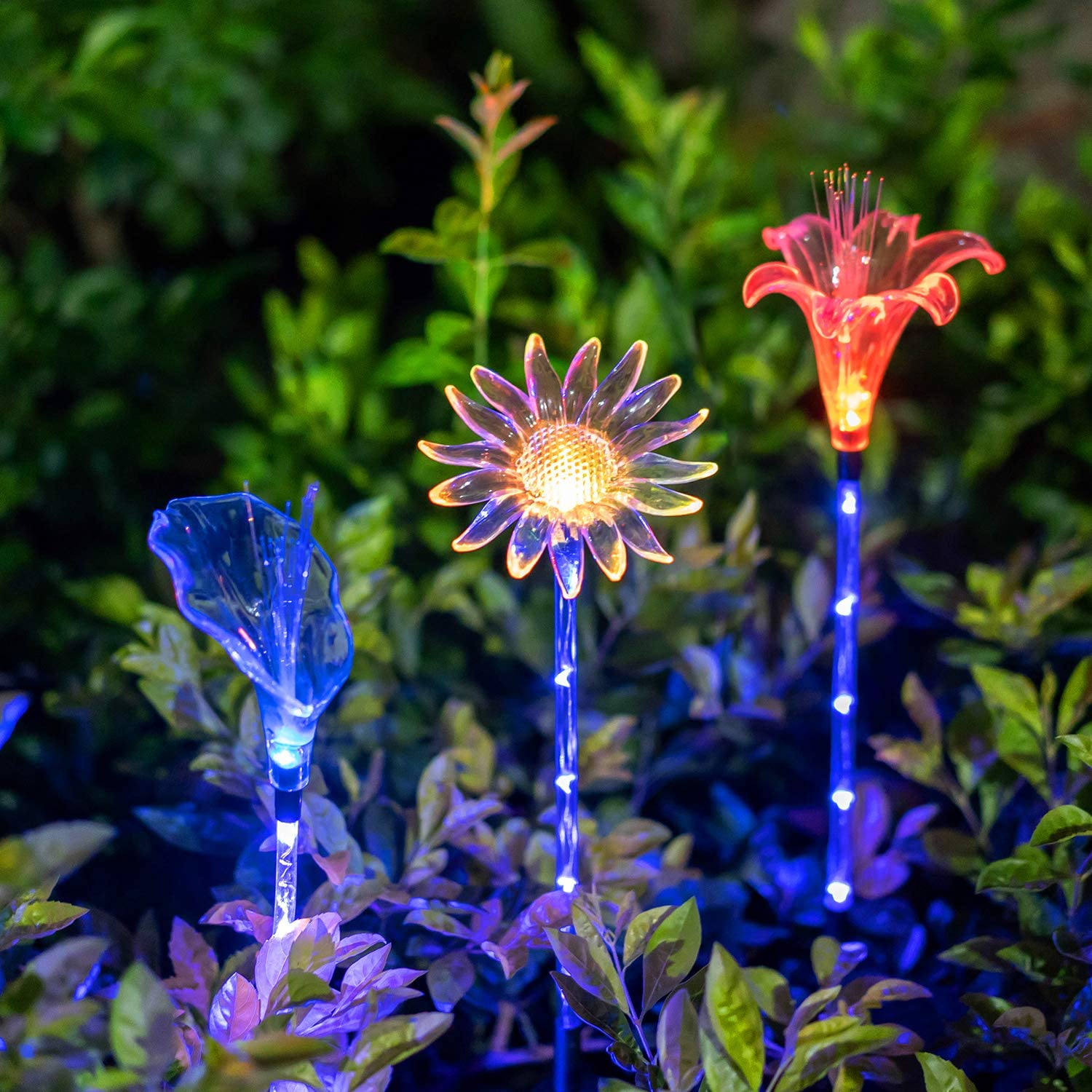 Philadelphia Mall Solar Popular products Garden Stake Lights - Set Decorative Chan of 3 Multi-Color