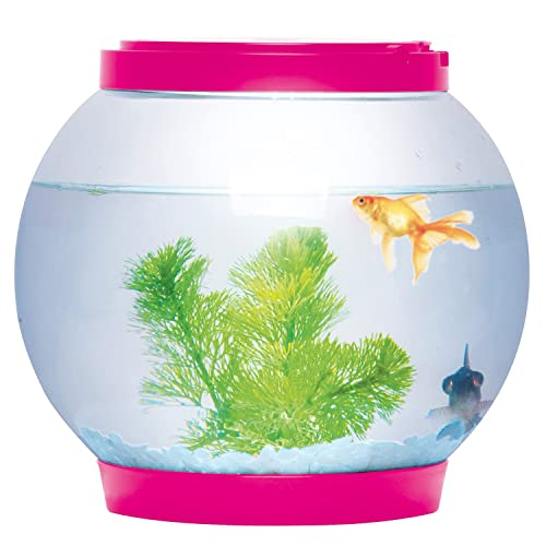 Desonocido Ø21.5cm 5 litros Light Up Ronda Brillante Cristal Cuenco del Acuario del Tanque de Escritorio LED: Amazon.es: Productos para mascotas