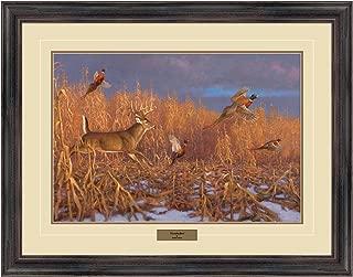 Reflective Art, Cornhuskers, Dark Walnut Framed, 26 by 34-inch
