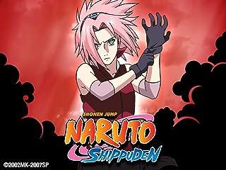 Naruto Shippuden Uncut Season 2 Volume 4