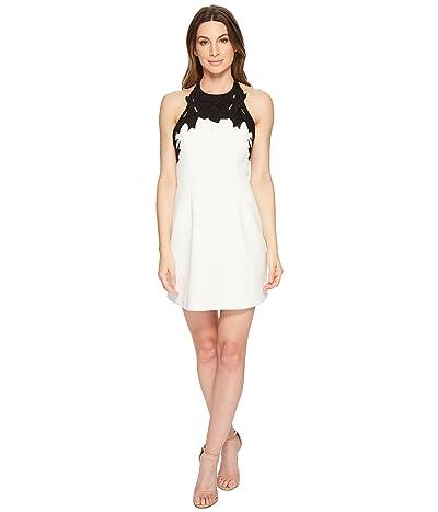 Halston Heritage Sleeveless High Neck w/ Embroidered Top Dress (Chalk/Black) Women