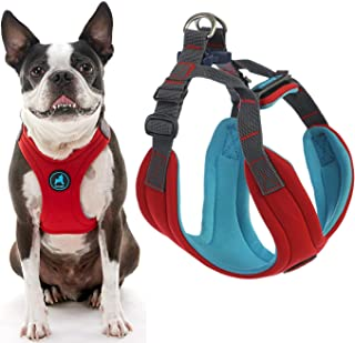 Gooby - Convertible Harness, Small Dog Step In Neoprene Harness with Easy Neck Fastener, Red, Large