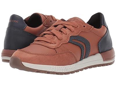 Geox Kids Jr Alben 8 (Little Kid/Big Kid) (Brown/Blue) Boys Shoes