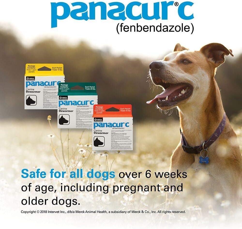 panacur giardia perros tratamentul viermilor hepatici
