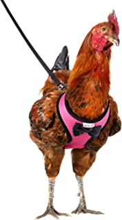 Yesito Chicken Harness Hen Size with 6ft Matching Leash – Adjustable, Resilient, Comfortable, Breathable, Large Size, Suitable for Chicken Weighing About 6.6 Pound,Pink