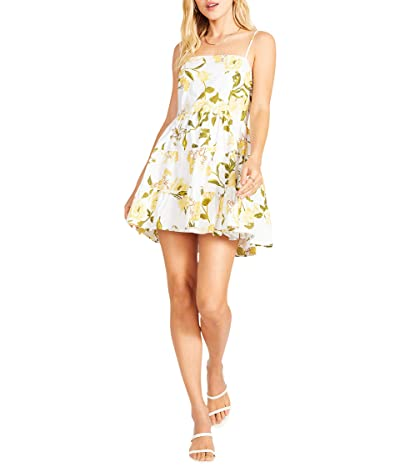 BB Dakota x Steve Madden Lush Life Dress Women