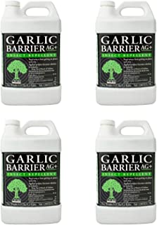 homemade garlic spray for mosquitoes