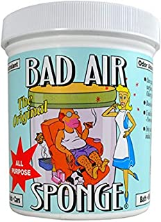 Bad Air Sponge Air Odor Absorbent