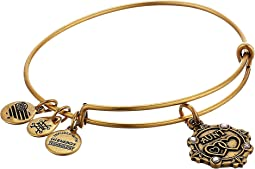 Alex and Ani - Because I Love You Aunt III Bangle