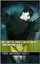 INT. July 01, 2006 11:45:01 PM By Troy Anthony Platt (English Edition)
