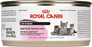 Royal Canin Feline Health Nutrition Babycat Instinctive Loaf In Sauce Canned Cat Food (Pack of