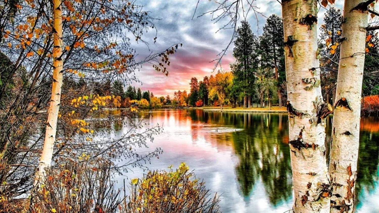 Malen Sie Nach Anzahl Kits DIY Sunset Lake Forest Landscape Für Erwachsenes Kindergeschenk 40x50cm with Combination Frame B07PQ3MC2K | Günstige Bestellung