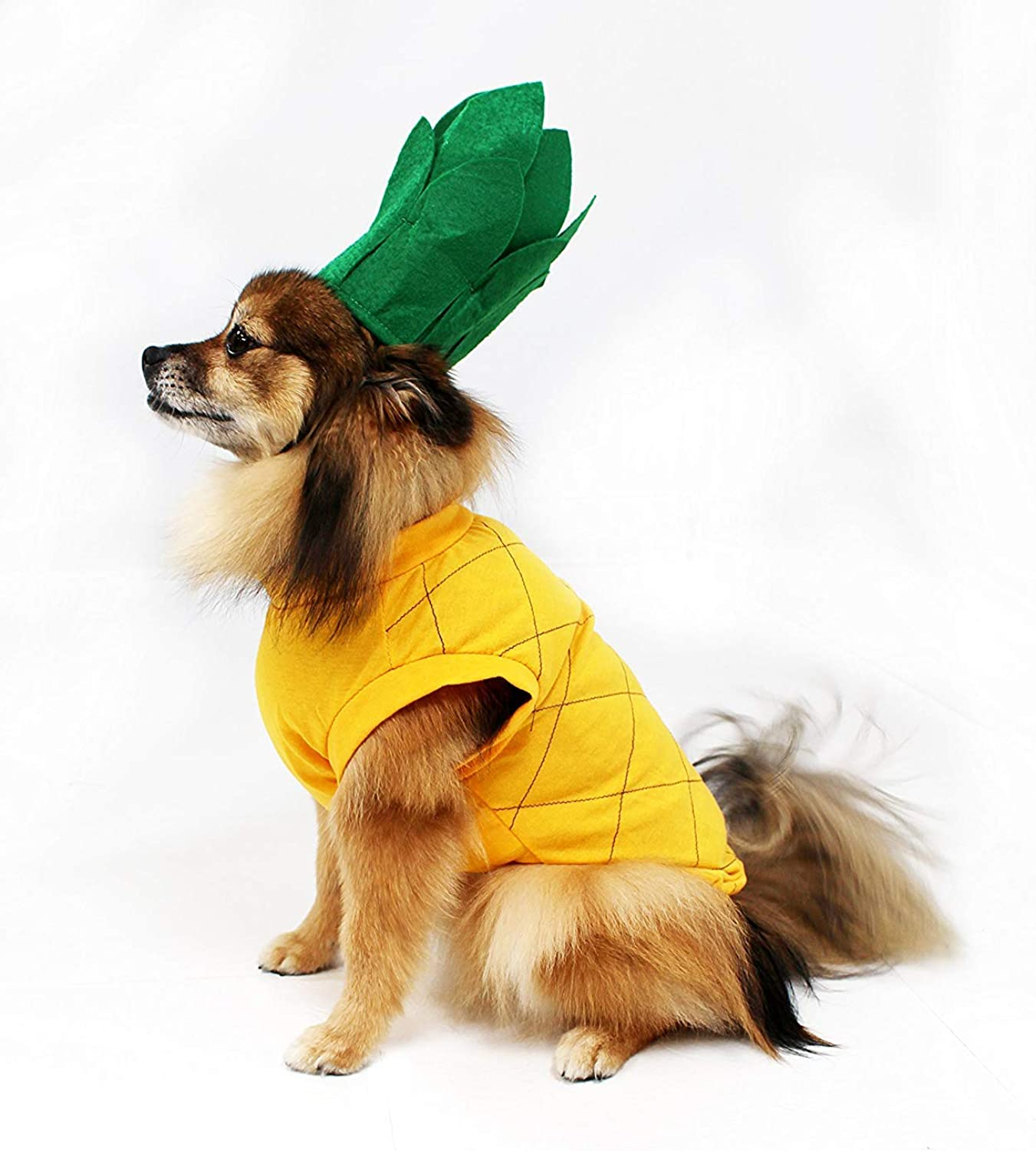 Midlee Pineapple Dog Costume (Medium)