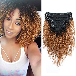 Sassina Ombre Kinky Curly Clip In Human Hair Extensions 8A Double Wefts For African American Black Women Natural Black Fading into Strawberry Blonde 120 Grams 7 Pieces-set 17 Clips KC TN27 12 Inch
