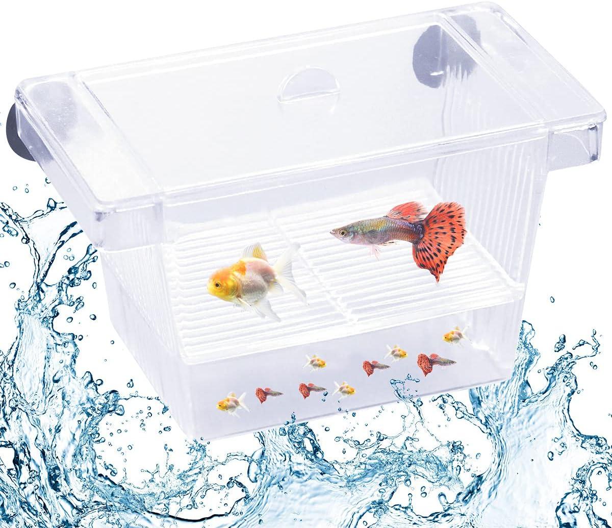 smatime Scatola di Isolamento, Aquarium Box, Trasparente Acquario Plastica Piccolo per Allevatore di Pesci Scatola Incubatrice per Allevamento Multifunzionale con Ventose