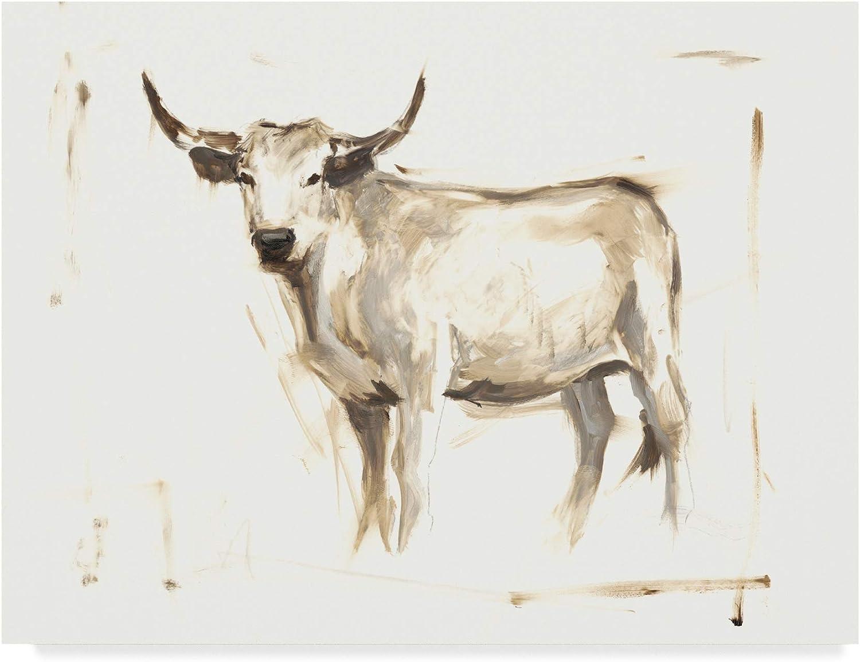 Trademark Fine Art White Cattle II by Ethan Harper, 14x19