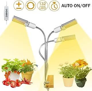 house plant light