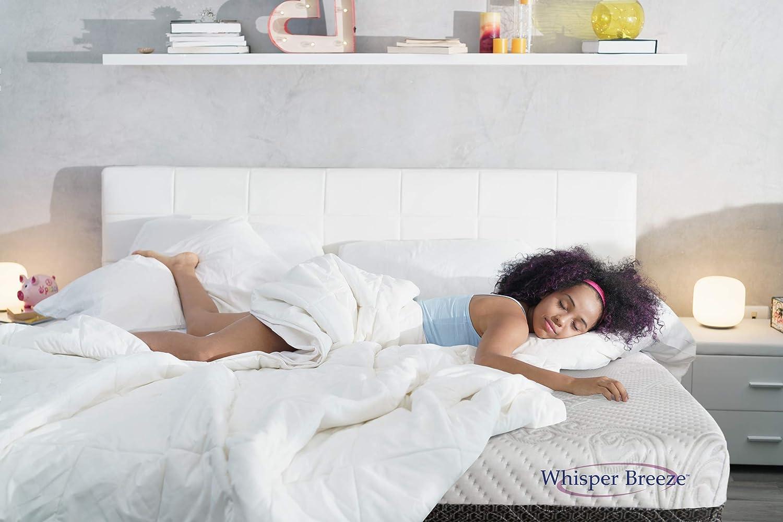 Whisper Memphis Mall Breeze online shop 8