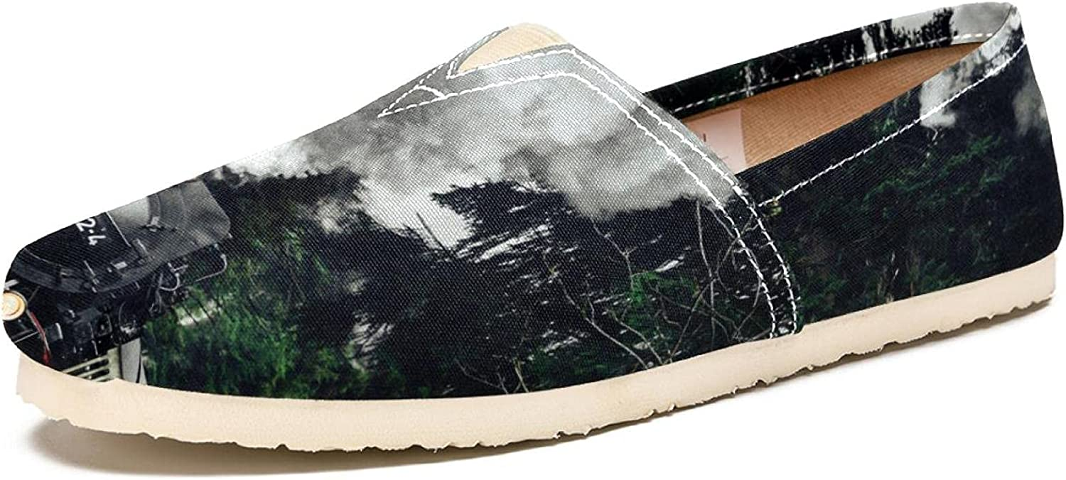 Women's Travel Canvas Shoes Comfortable Fashion On Slip Walking 55% store OFF