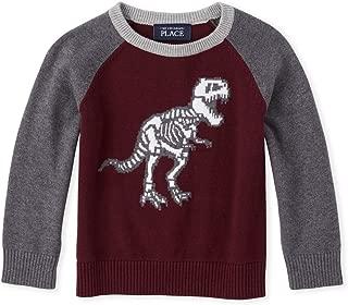 Baby Boys Long Sleeve Raglan Sweater