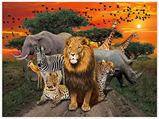 Allenjoy 8x6ft Jungle Safari Backdrop for African Desert Animal Forest Summer Sunset Scenic 1st First Birthday Party Photography Event Table Decoration Banner Background Children Photo Booth Shoot