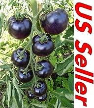 Amazon.es: semilla tomate negro