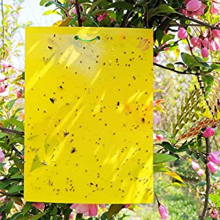 Reayouth 10 Pack Yellow Sticky Traps, Dual-Sided, 15x20cm, Fly Trap with Twist Ties for Capture Insects Like Gnats, Flies,...