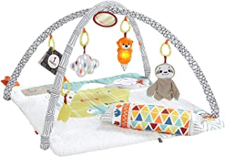 Fisher-Price Linkimals Counting Koala Perfect Sense Deluxe Gym, Multi