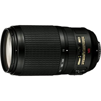 Nikon AF-S VR 70-300mm F4.5-5.6 G: Amazon.es: Electrónica