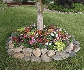 Shady Annual Tree Flower Mat - Grow Shady Annual Border Garden Flowers. Includes: (1) Pre-seeded  17