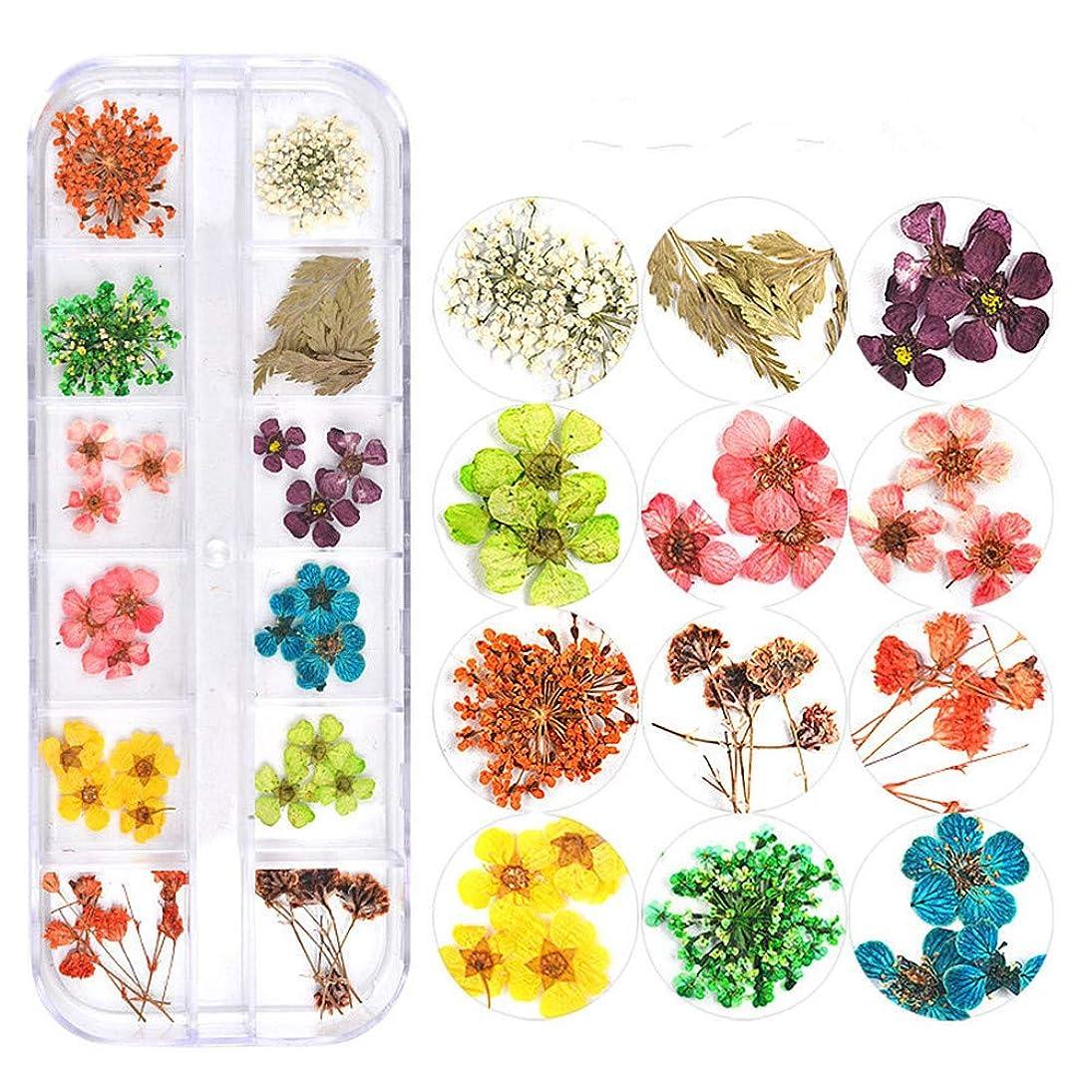 決して充電維持押し花 ドライフラワー 3Dネイル レジンデコレーション DIYデコレーション飾り用品 (3)