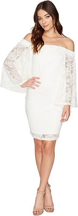 Daniela Stretch Lace Off the Shoulder Dress