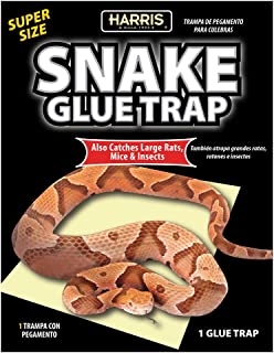 Best large snake trap Reviews