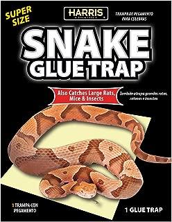 garden snake trap