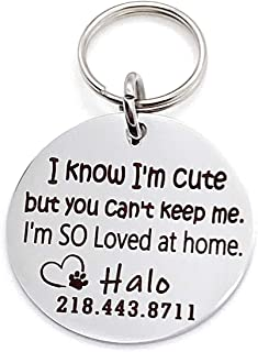 """Personalized Heart and Paw Dog or Cat ID Collar Tags -""""I know I'm cute but you can't keep me."""""""