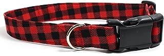 dog collars berkeley