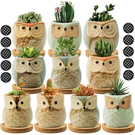 FairyLavie Succulent Pots, 2.5'' Owl Planter Owl Pot, Small Pots for Plants Cute Small Planter with Accessories, Great for Home Decor and Ideal Gift, Set of 10