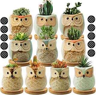 FairyLavie Succulent Pots, 2.5'' Owl Planter Owl Pot, Small Pots for Plants Cute Small Planter with Accessories, Great for...