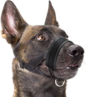Best no bite muzzle Reviews
