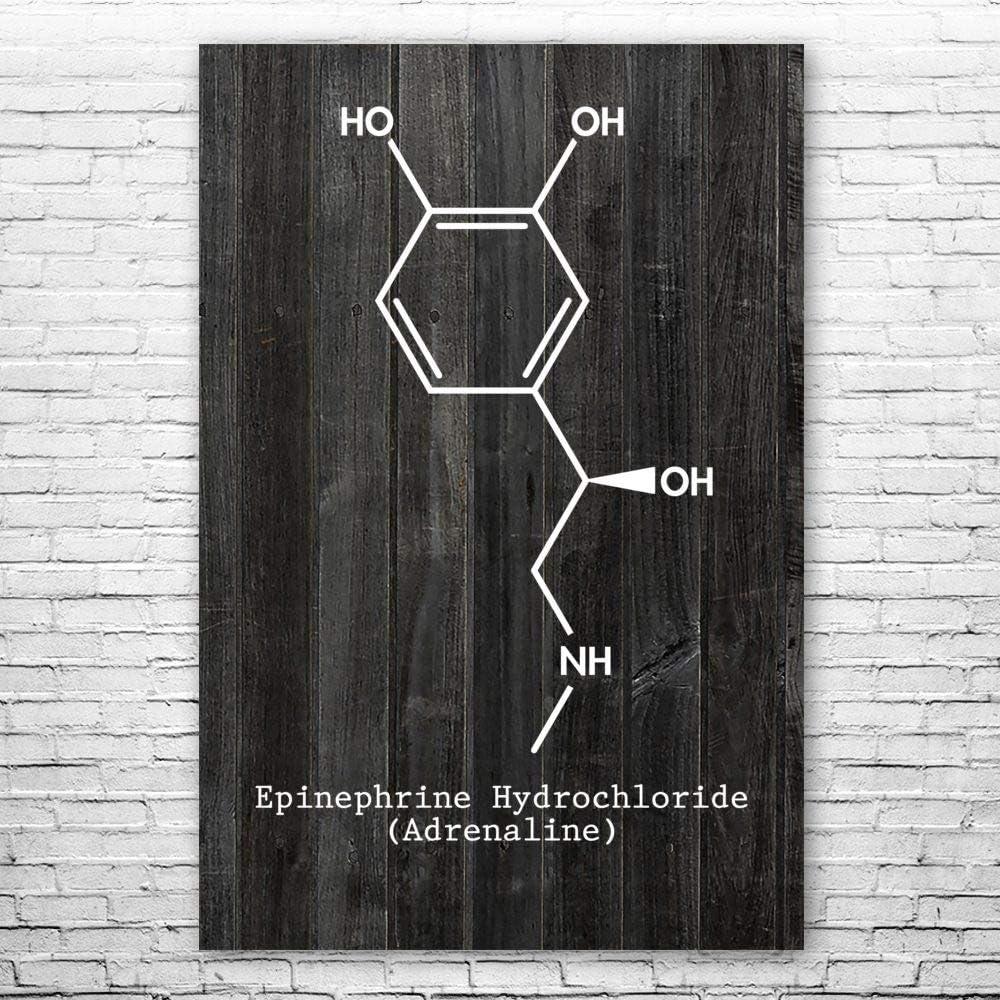 Patent Earth Adrenaline Molecule Poster Print 現品 卸売り Biology G Teacher