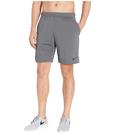 Nike Dry Shorts Epic 2.0 (Iron Grey/Black) Men