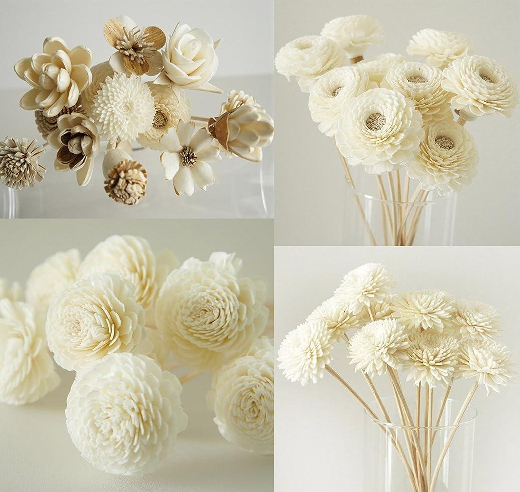 一部今晩パンダエキゾチックPlawanature Mix 4のセット42人気Sola Wood Flower with Reed Diffuser for Home Fragranceアロマオイル。
